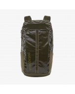 Patagonia black hole pack 25l basin green